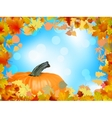Fall leaves with pumpkin and sky background eps 8 vector