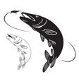 Fish pike vector