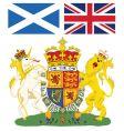 Scotland emblem vector