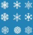 Snowflake icon winter theme winter snowflakes of vector
