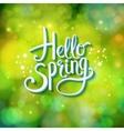 Hello spring sparkling green card design vector
