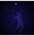 Abstract tennis player silhouette vector