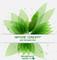 Leaf concept 2 vector