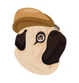 Dog brown hat on white background vector