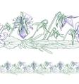 Seamless border of pansies vector
