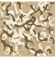 Camouflage pattern vector