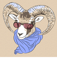 Funny alpine ibex in red eyeglasses and scarf vector
