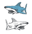 Shark cartoon hand drawn eps8 vector