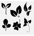 Leaves silhouettes vector