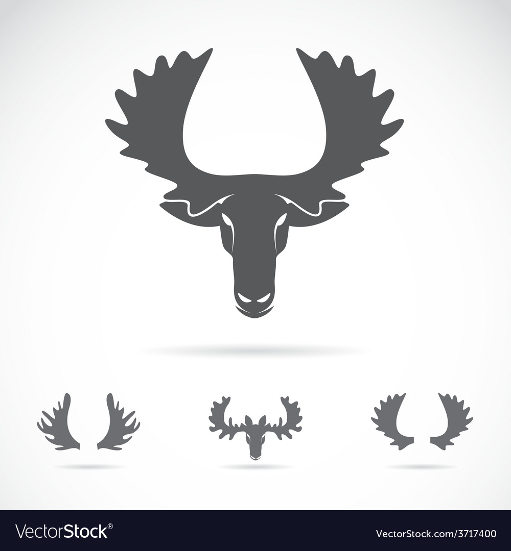 Image of an moose head vector | Price: 1 Credit (USD $1)