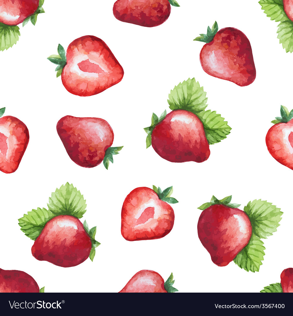 Seamless pattern watercolor fruit strawberry vector