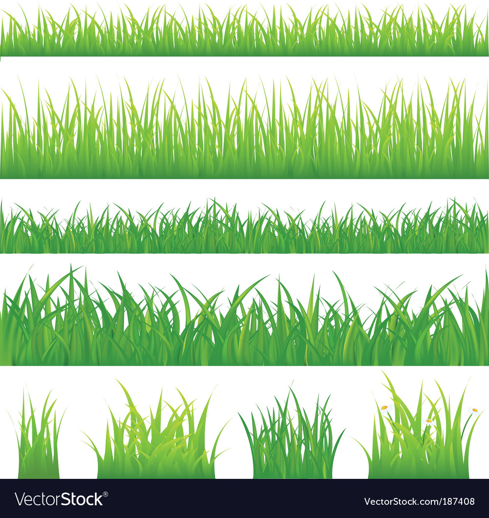 Grassy borders vector | Price: 1 Credit (USD $1)