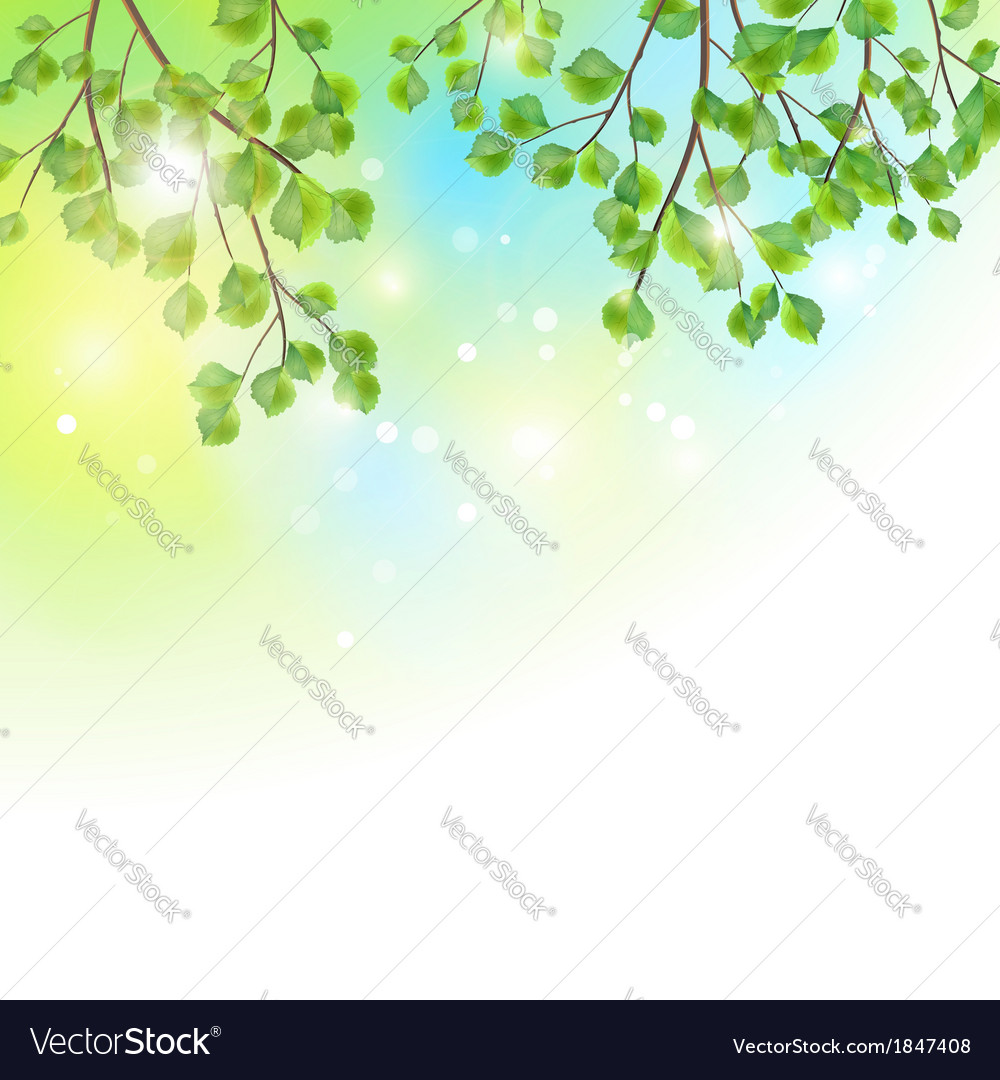 Green leaves tree branches background vector | Price: 1 Credit (USD $1)
