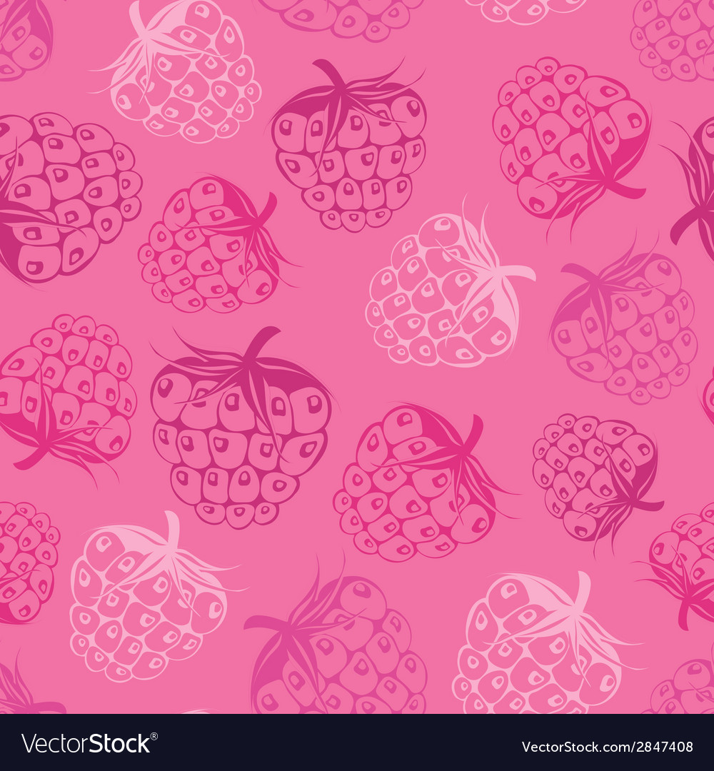 Seamless pattern with raspberry vector | Price: 1 Credit (USD $1)