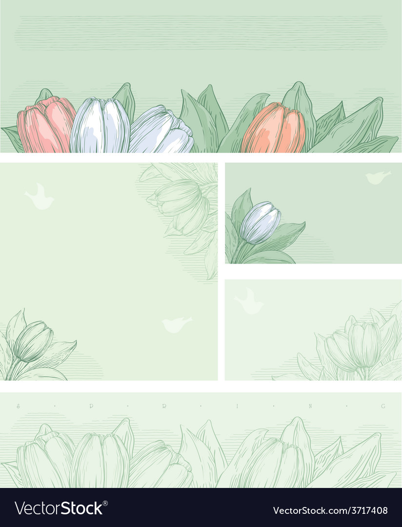 Spring floral backgrounds vector | Price: 1 Credit (USD $1)