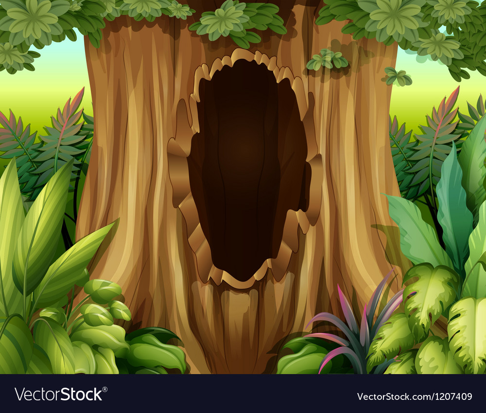 A hole in a big tree vector | Price: 1 Credit (USD $1)