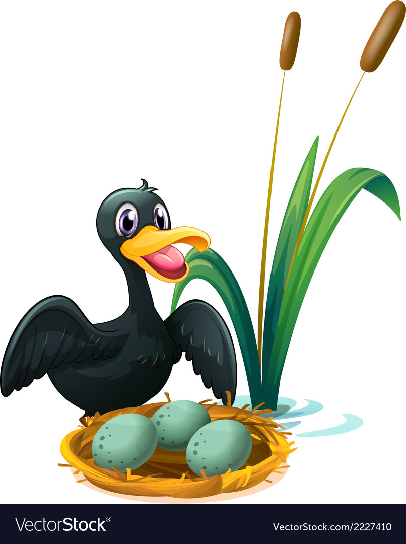 A duck near the nest with eggs vector | Price: 1 Credit (USD $1)