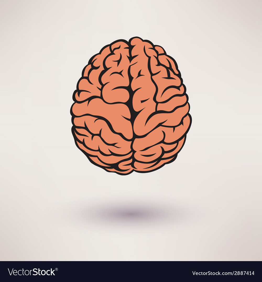 Brain icon on the white background vector | Price: 1 Credit (USD $1)