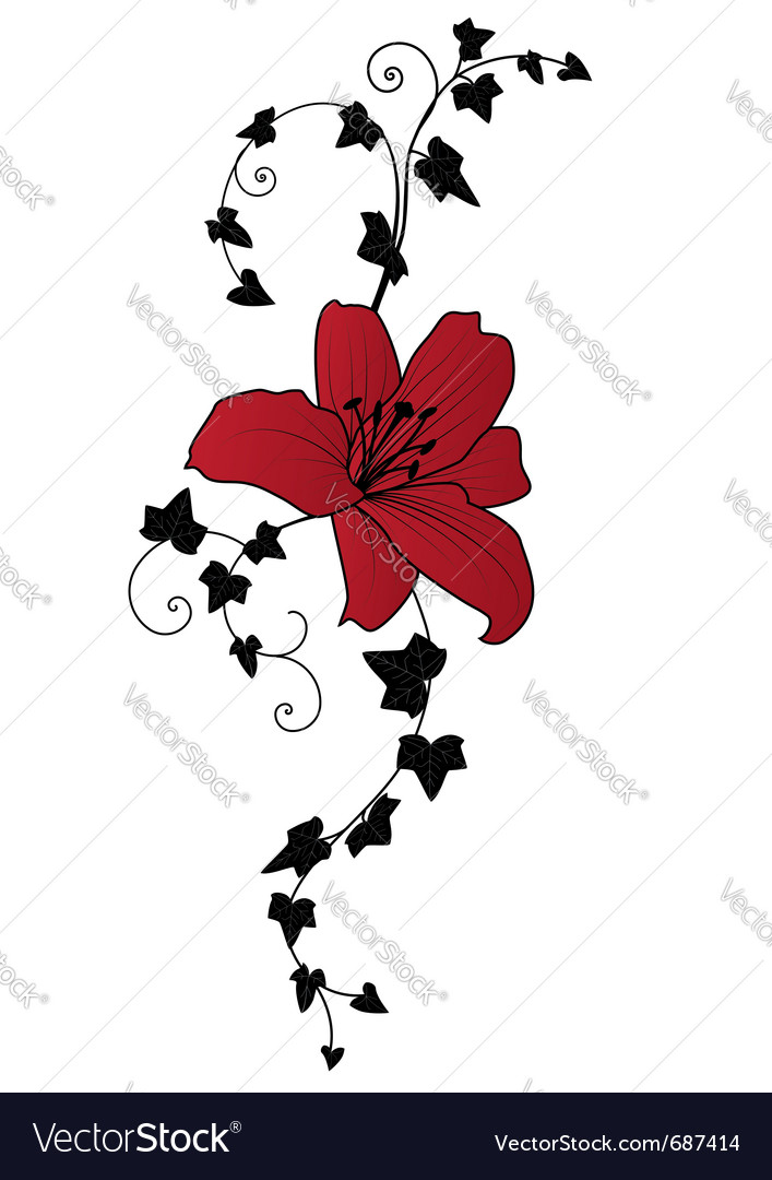 Lily and ivy vector | Price: 1 Credit (USD $1)