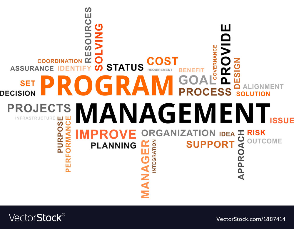 Word cloud program management vector | Price: 1 Credit (USD $1)