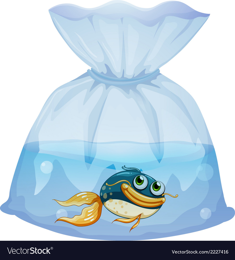 A fish inside a plastic pouch vector | Price: 1 Credit (USD $1)