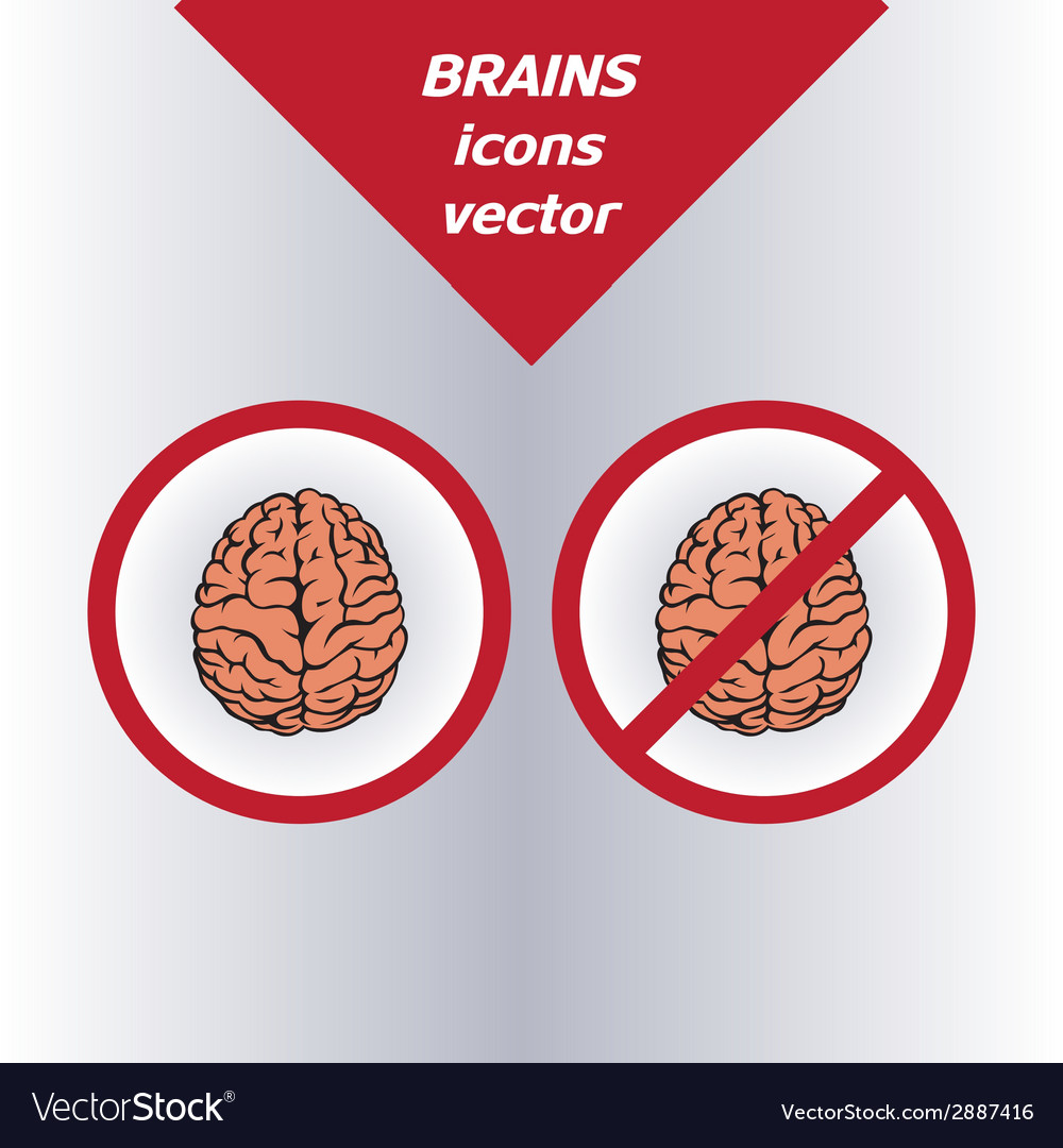 Brain icons on the white background vector | Price: 1 Credit (USD $1)