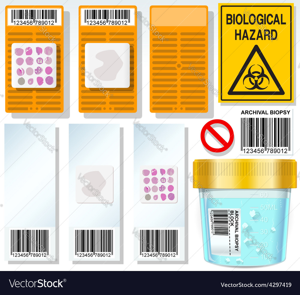 Archival biopsy complete set vector | Price: 3 Credit (USD $3)