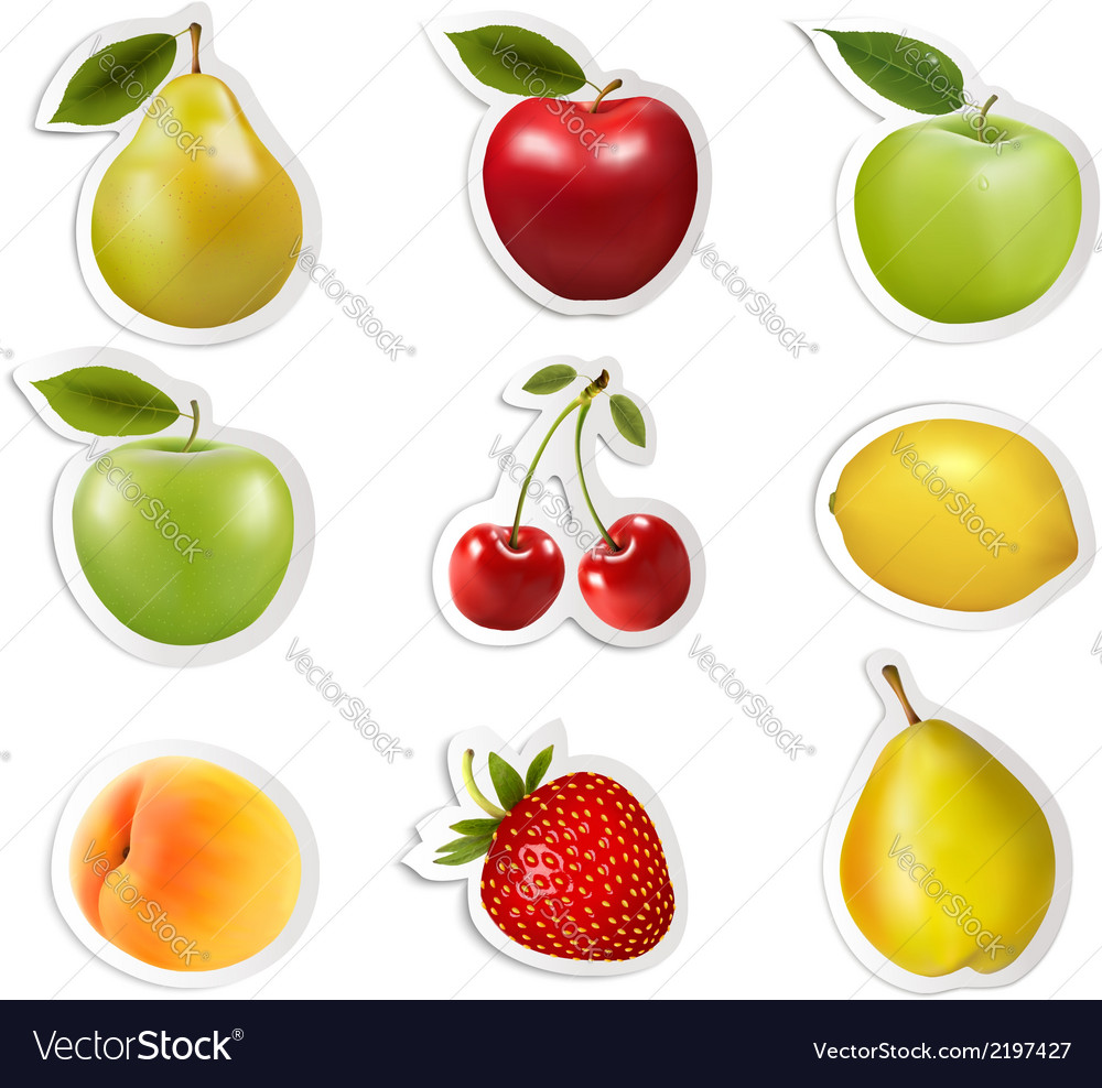 Big collection of labels with fruits vector | Price: 1 Credit (USD $1)