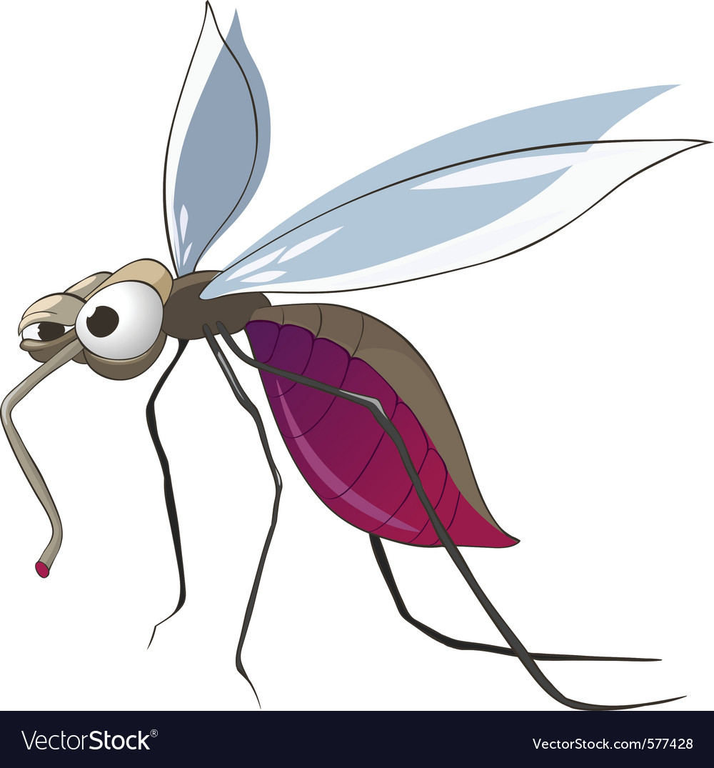 Cartoon mosquito vector | Price: 1 Credit (USD $1)