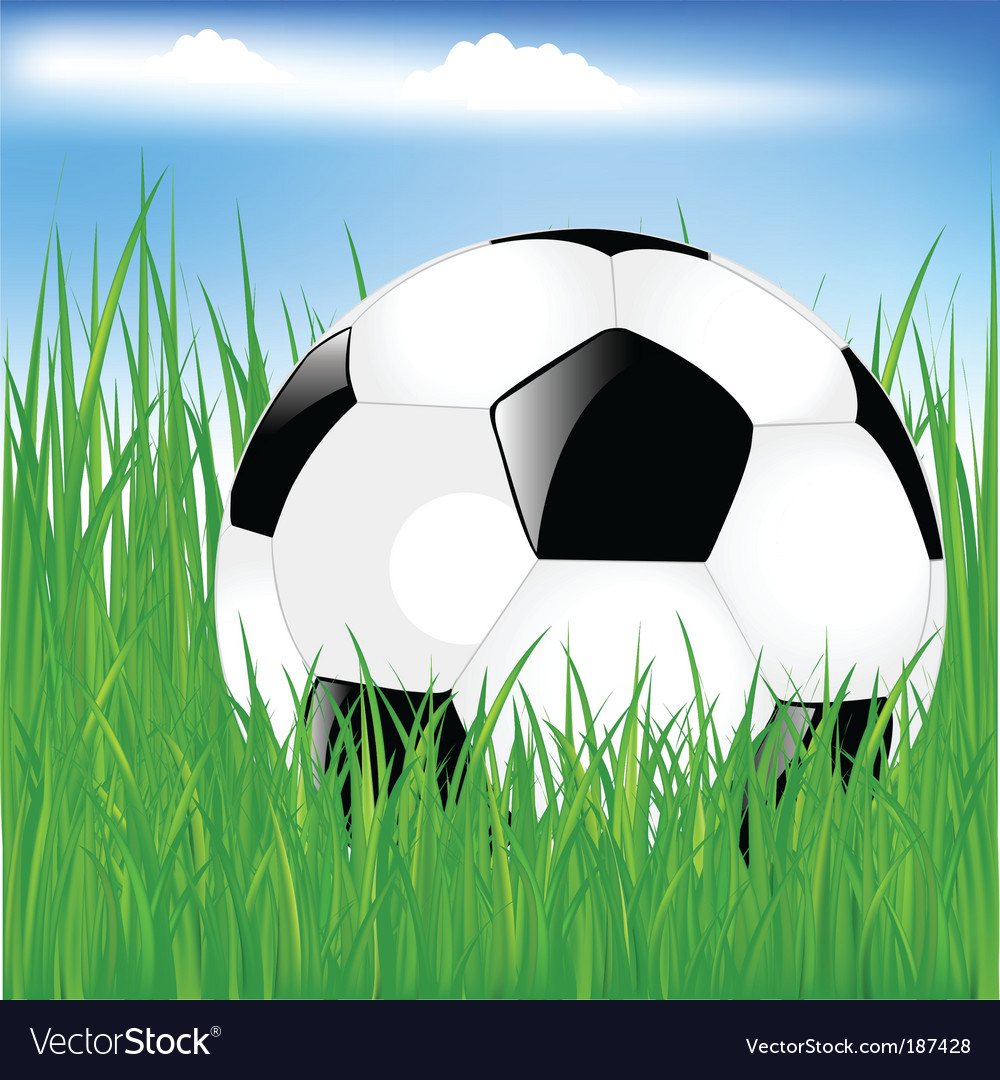 Classic soccer ball in grass vector | Price: 1 Credit (USD $1)