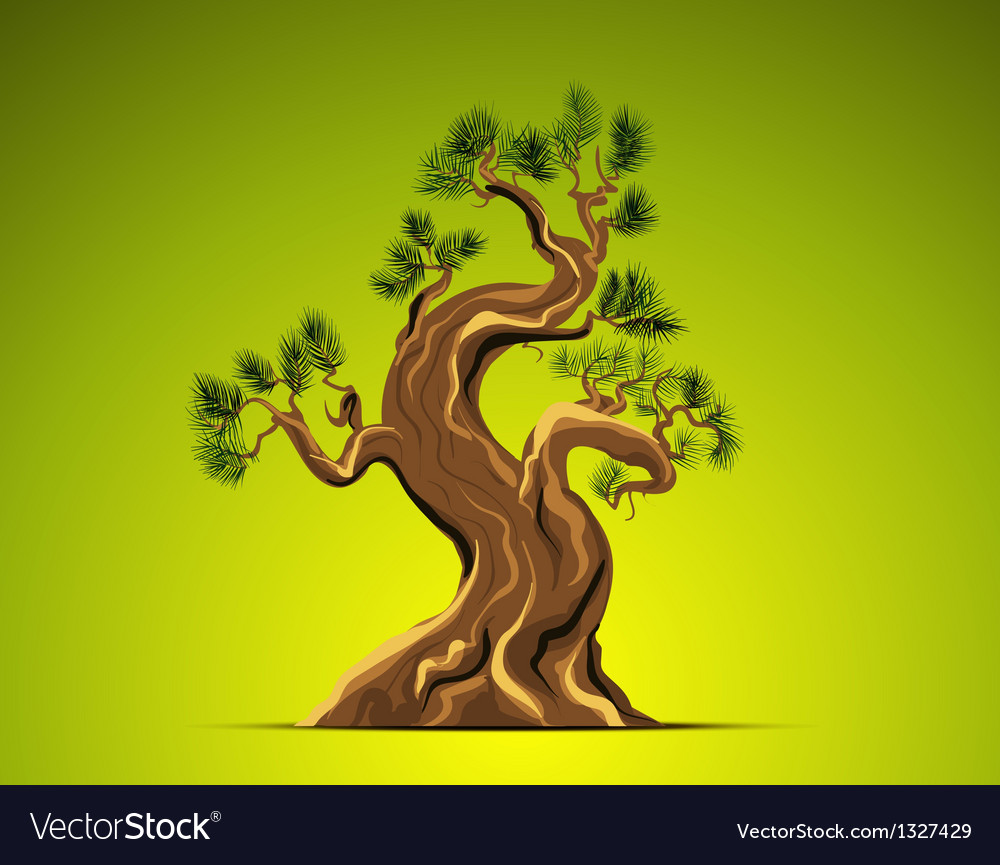 Bonsai tree background vector | Price: 1 Credit (USD $1)