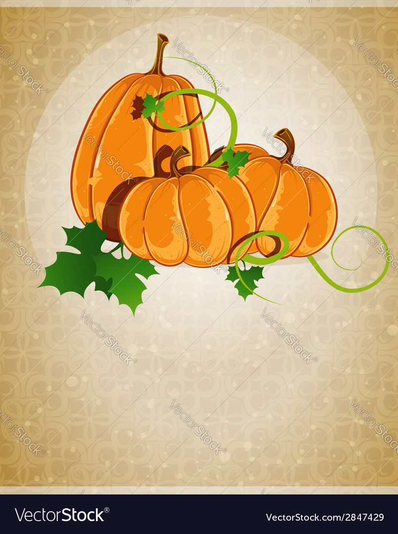 Pumpkins on a beige background vector | Price: 1 Credit (USD $1)