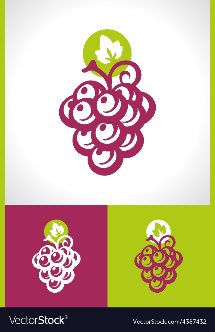 Grape and vine icon vector | Price: 1 Credit (USD $1)