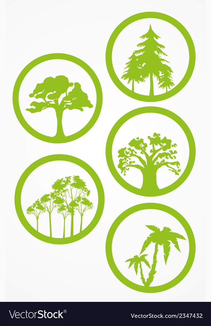 Trees - set vector | Price: 1 Credit (USD $1)