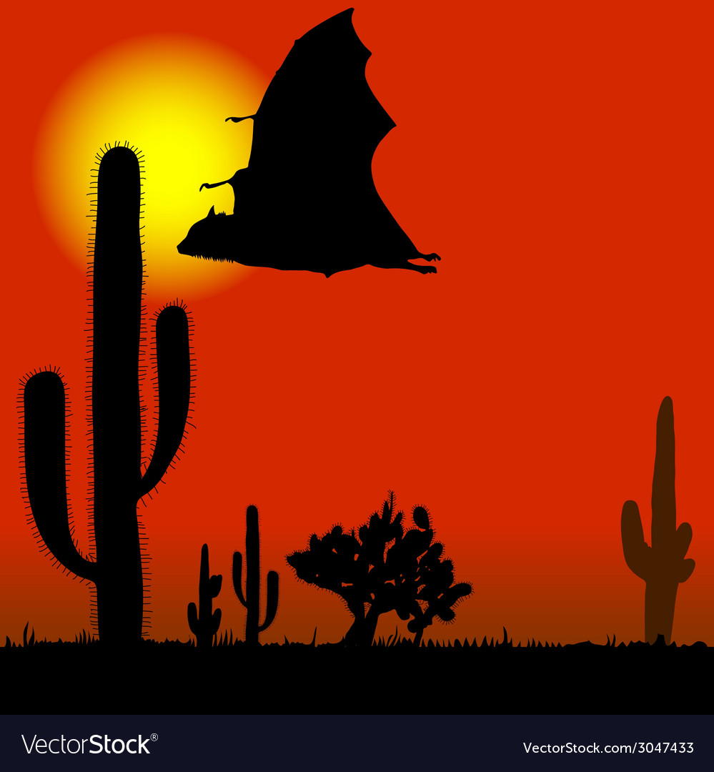 Flying bat black silhouette and cactus vector | Price: 1 Credit (USD $1)