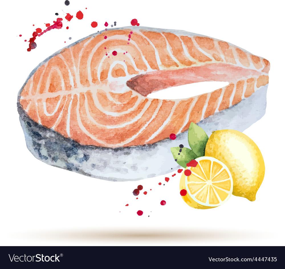 Watercolor steak fish vector | Price: 1 Credit (USD $1)