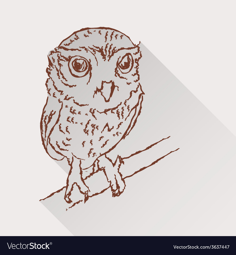 Drawing of little owl with long shadow vector | Price: 1 Credit (USD $1)