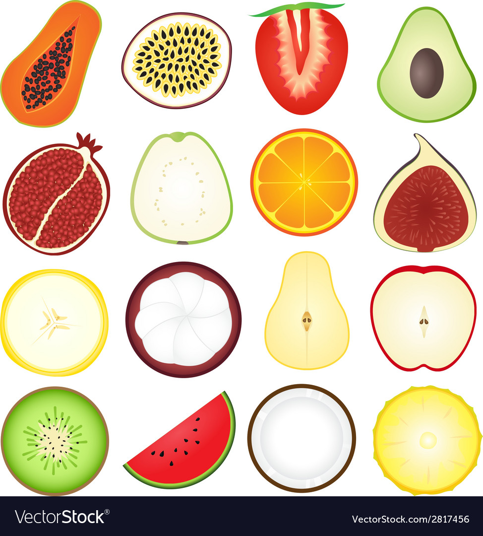Fresh fruits icon collection vector | Price: 1 Credit (USD $1)