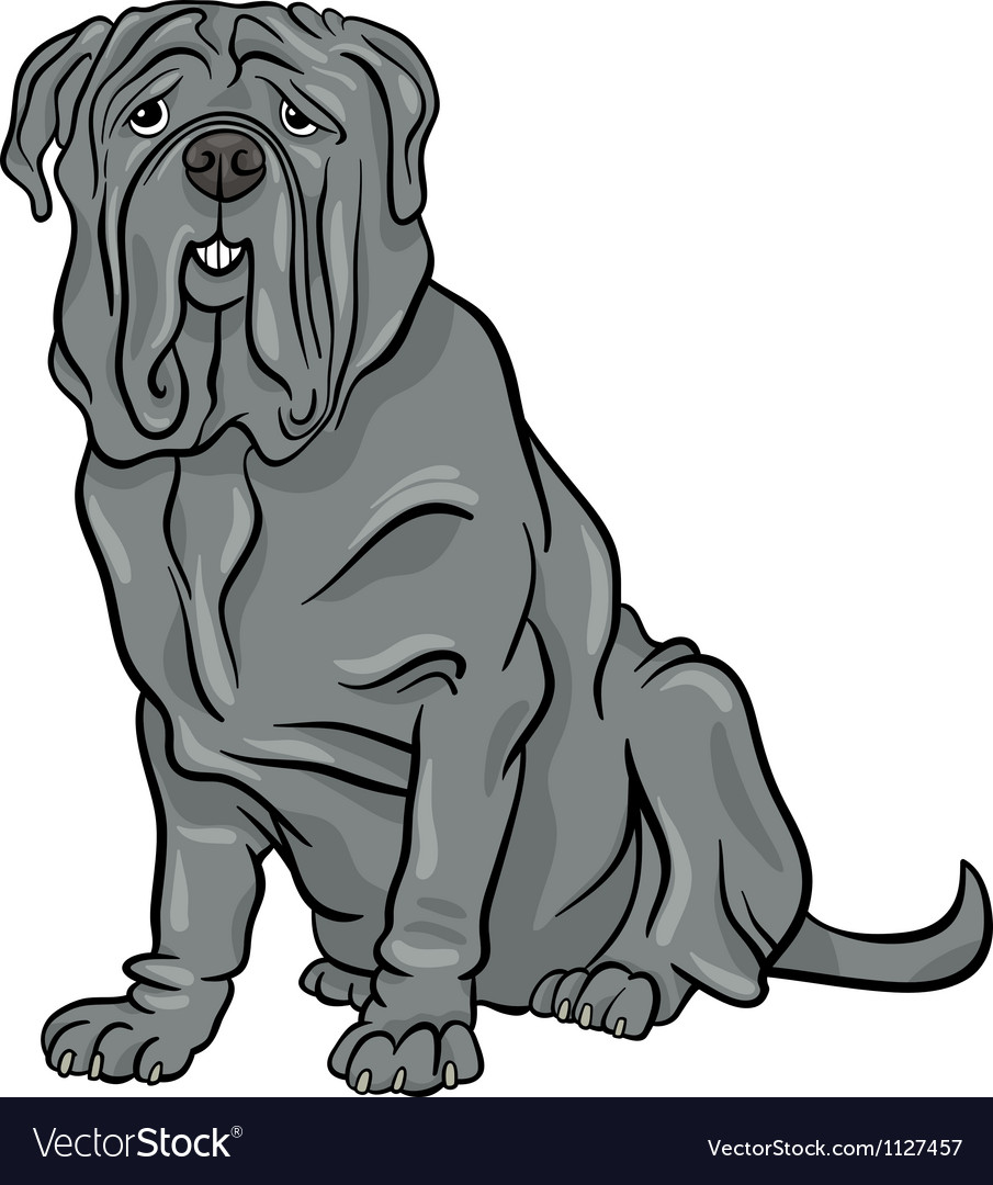Neapolitan mastiff dog cartoon vector | Price: 1 Credit (USD $1)