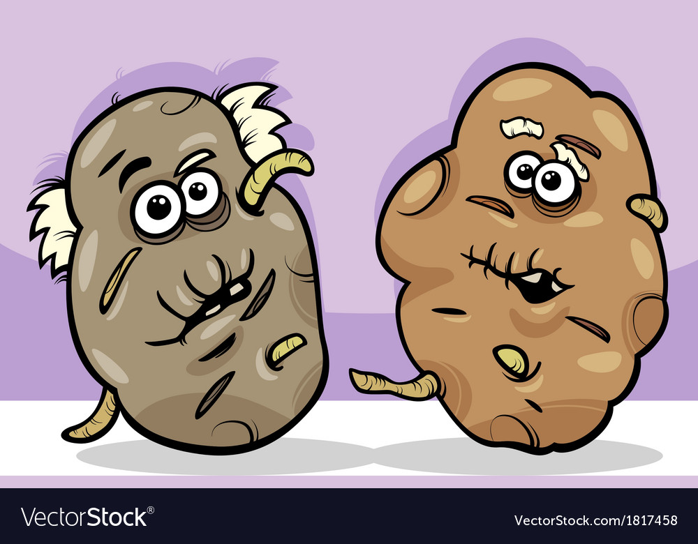Old potatoes cartoon vector | Price: 1 Credit (USD $1)