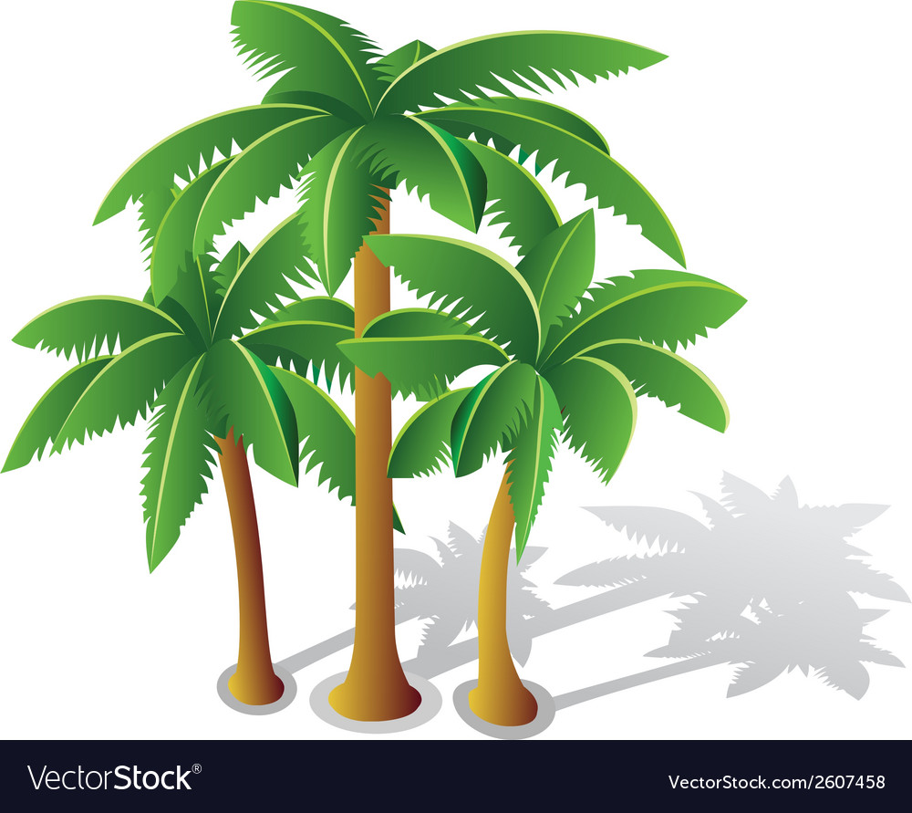 Tropical palms vector | Price: 1 Credit (USD $1)