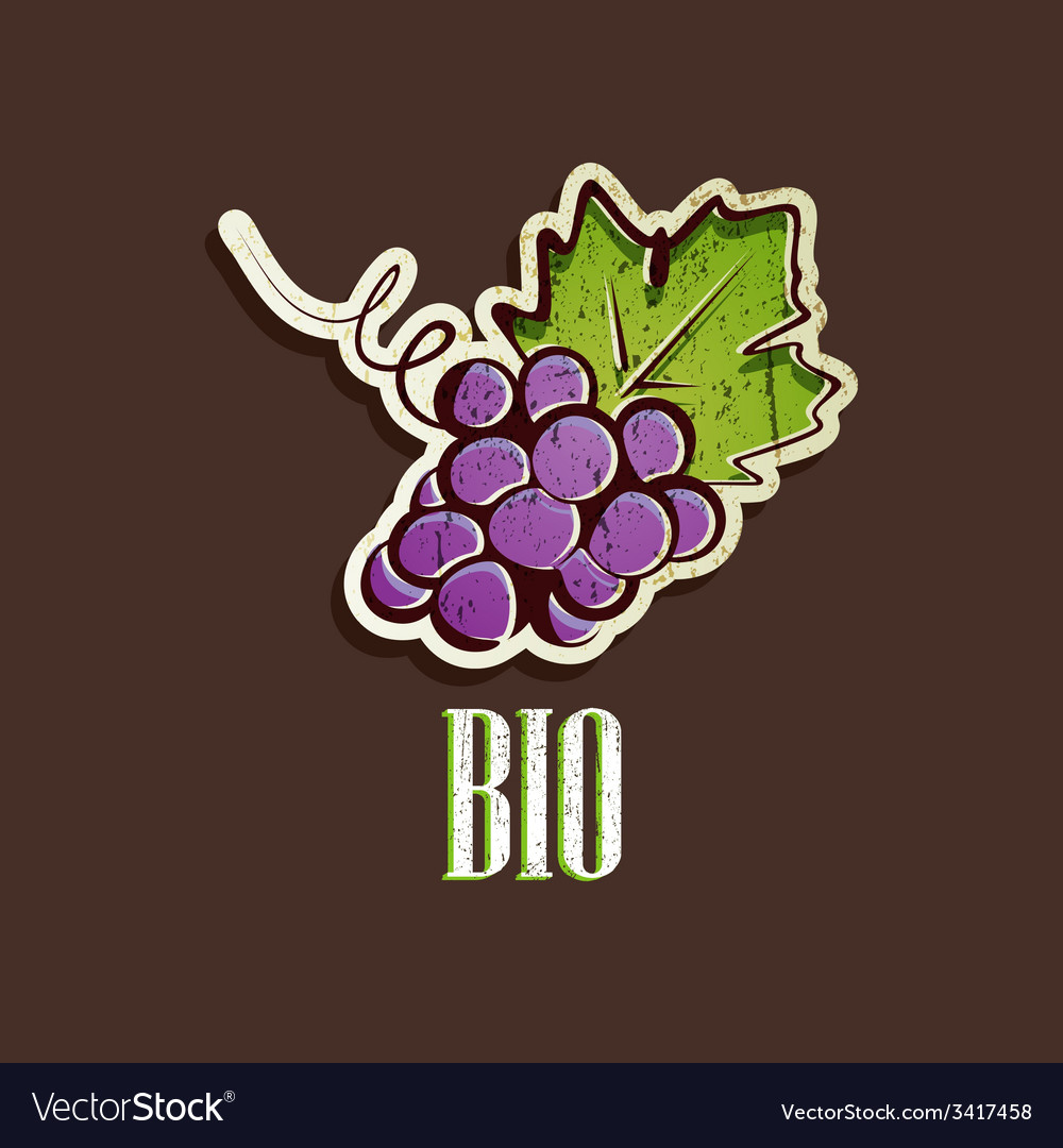 Vintage with grapes vector | Price: 1 Credit (USD $1)