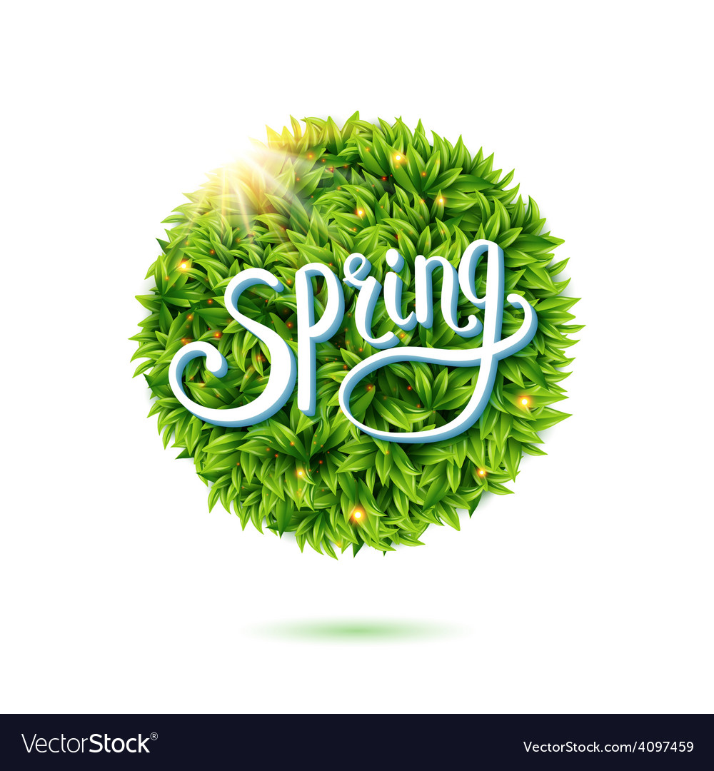 Fresh green leaves and sunshine for spring vector | Price: 3 Credit (USD $3)