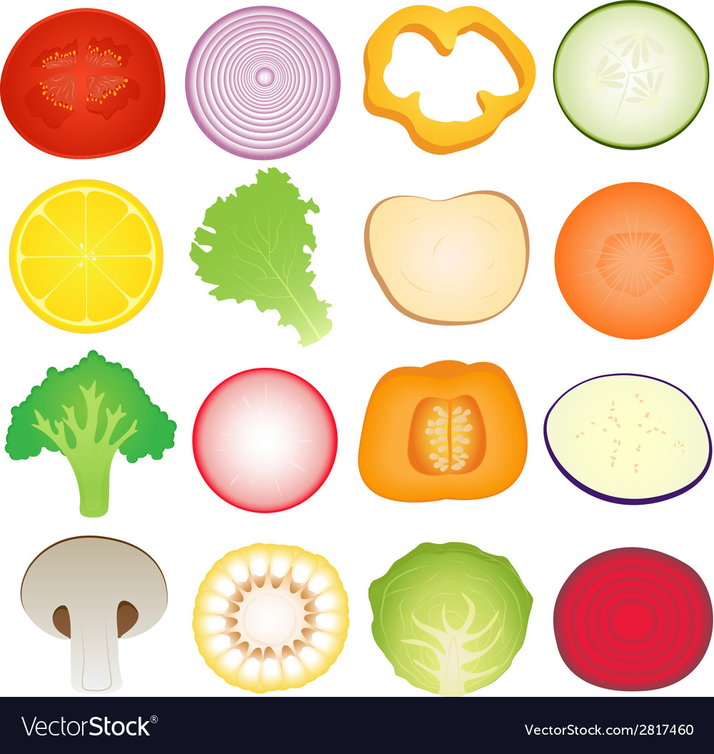 Vegetables slice set vector | Price: 1 Credit (USD $1)