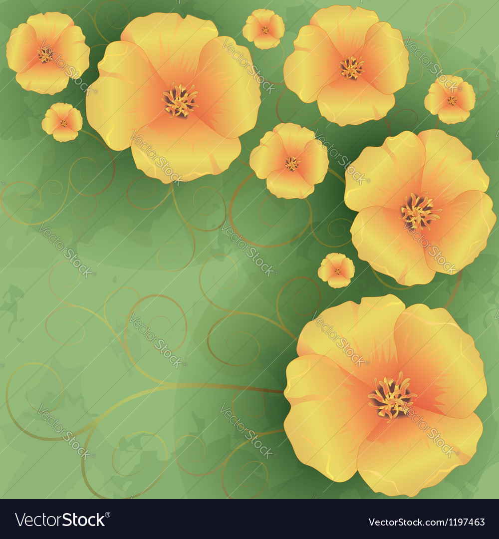 Vintage floral background with flowers poppies vector | Price: 1 Credit (USD $1)
