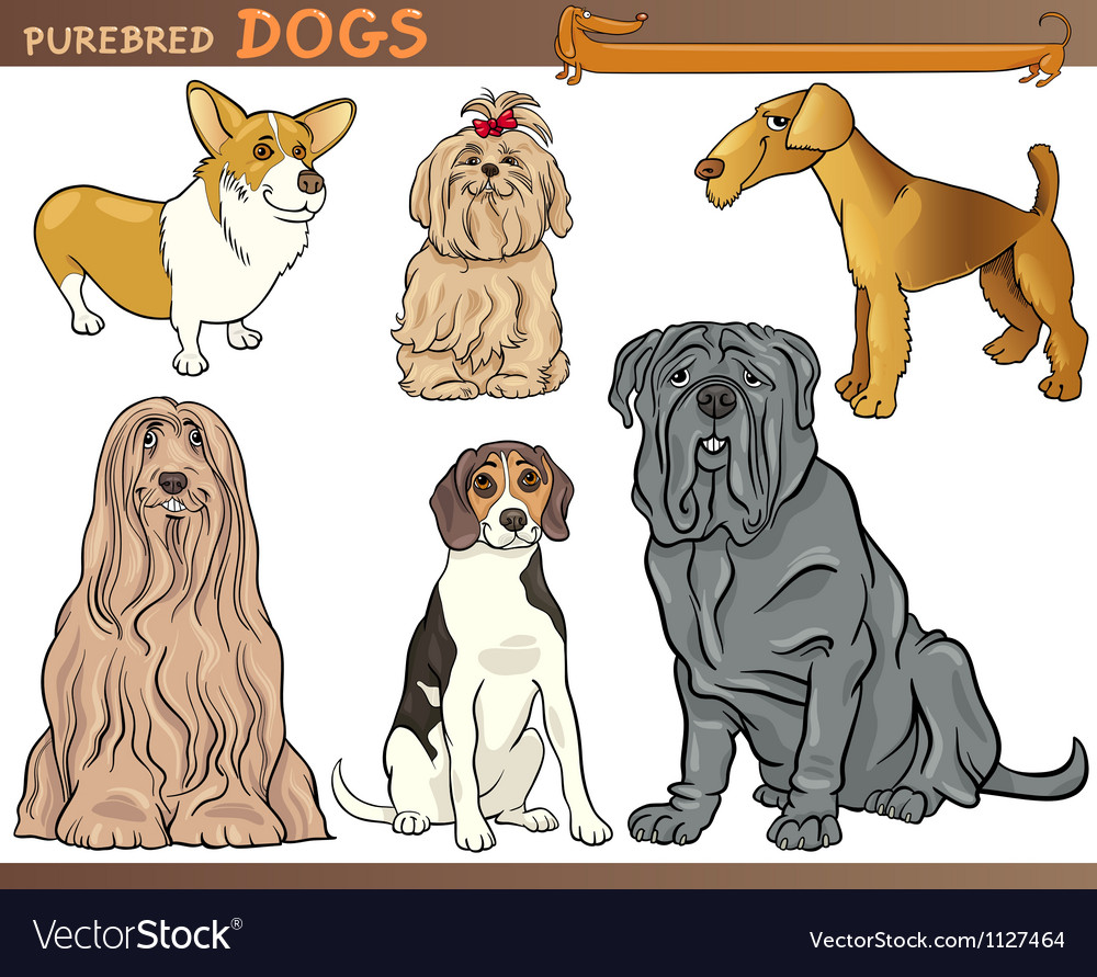 Purebred dogs cartoon set vector | Price: 1 Credit (USD $1)