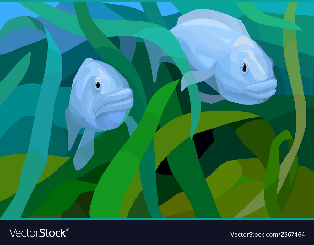 Underwater view with fishes in the sea vector | Price: 1 Credit (USD $1)