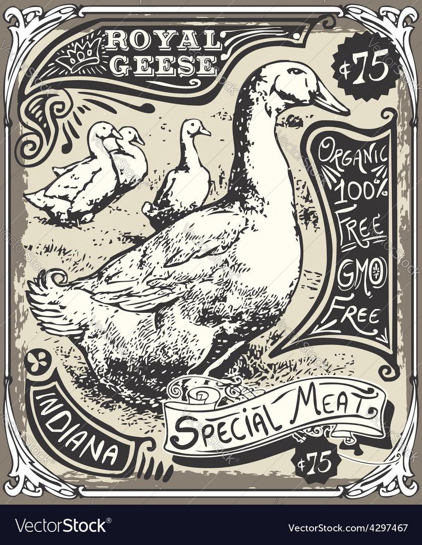 Vintage goose advertising vector | Price: 3 Credit (USD $3)