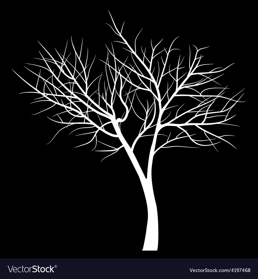 Trees with dead branch vector | Price: 1 Credit (USD $1)