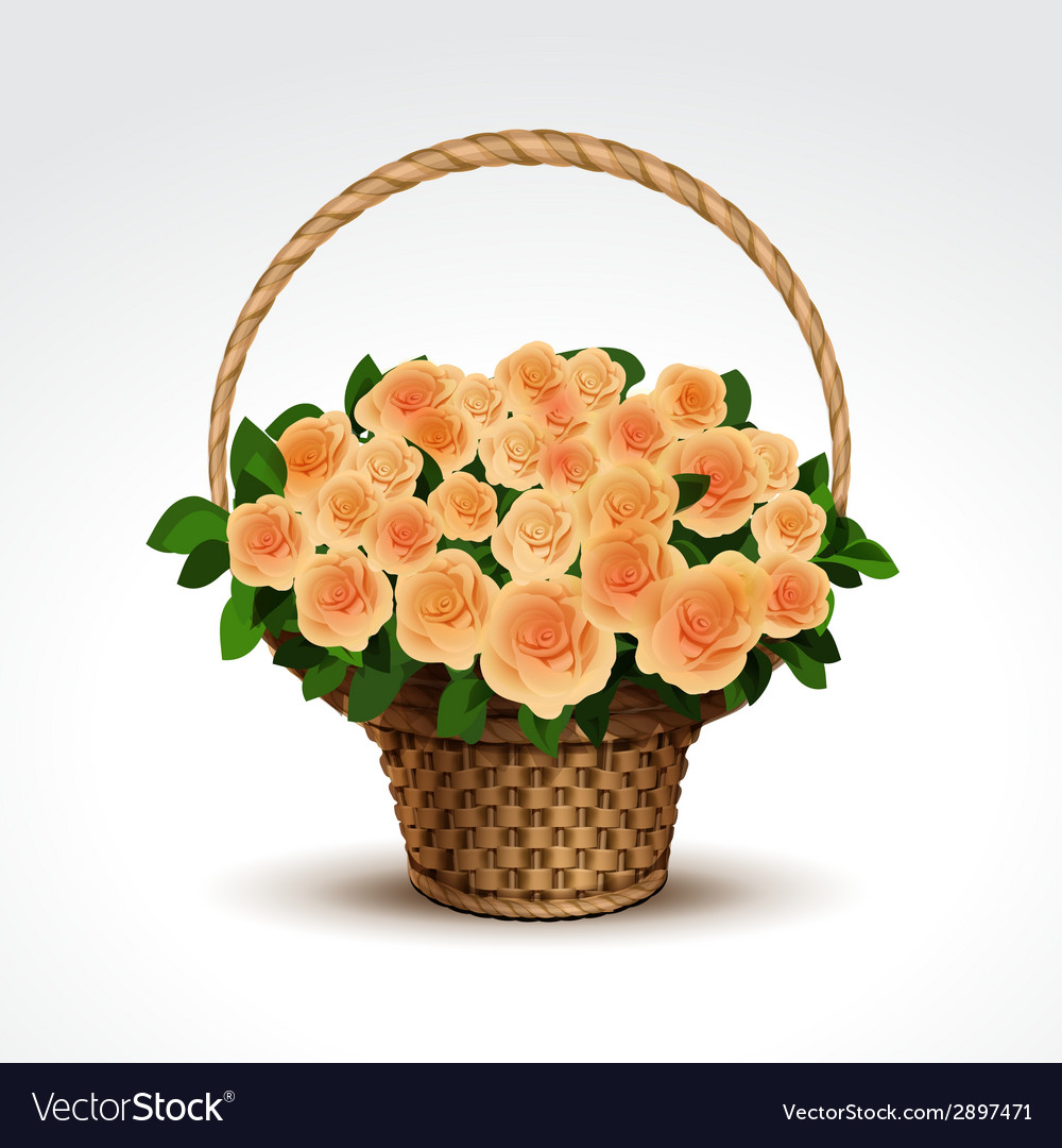Basket of yellow roses isolated vector | Price: 1 Credit (USD $1)